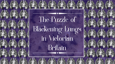 Victorian Lung For Online 1