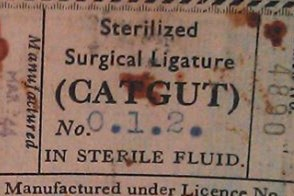 Catgut Surgical Ligature
